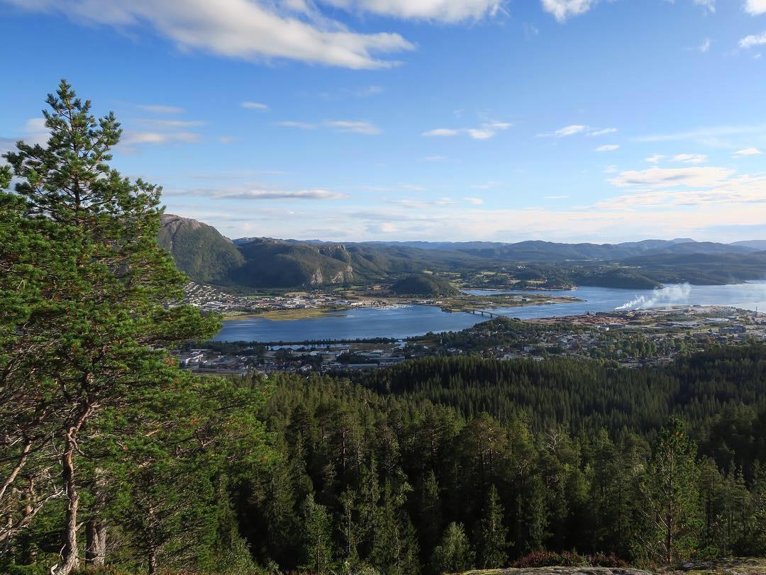 Turforslag: Svartfjellet 245 moh.