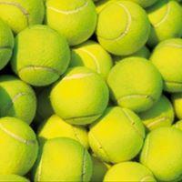 Piteå Tennisklubb