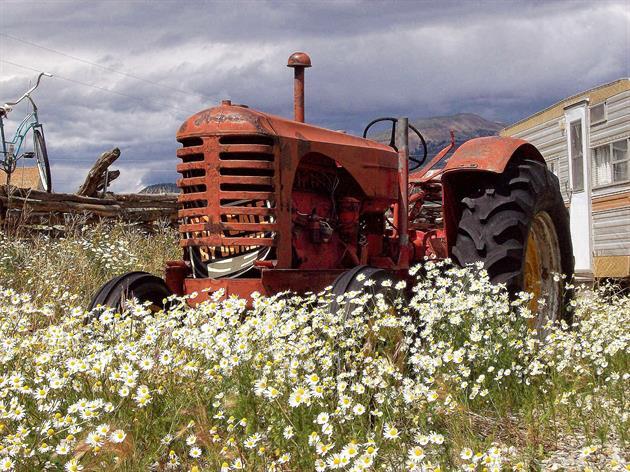 Traktorns dag