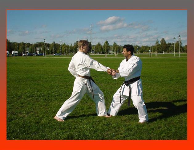 Norrfjärden Karate Club